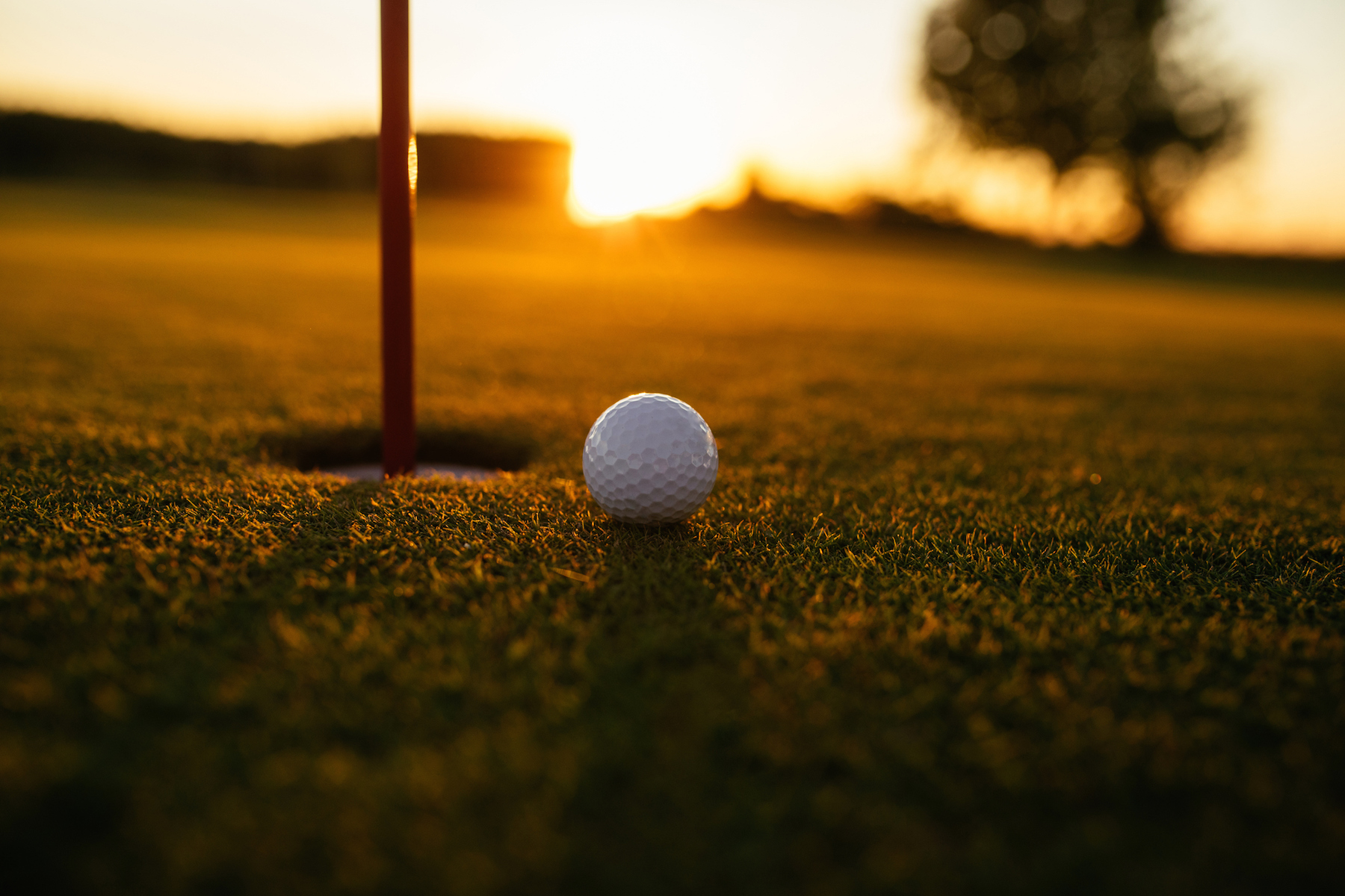 Golf ball on fairway at sunset.